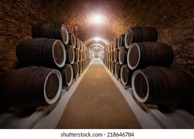 Wine cellar with stacked oak old barrels for maturing wine.