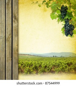 Wine composition with vineyard. Wine list background. Grape on the blank paper for the wine collage. Bunches of red grapes to grapevine and wooden grunge background.