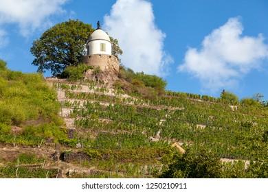 Wine county Wackerbarth in Saxonia, Germany