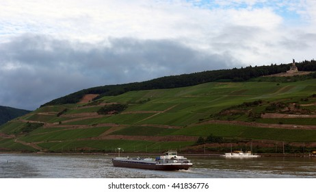 Wine field Nierstein Bingen with inlan vessel sailing on the rhein river Germany June 2016,inland ship, binnenvaart , cargo transport