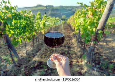 Wine glass in hand of drinker and landscape of Tuscany, with green valley of grapes. Wine beverage tasting in Italy during harvest.