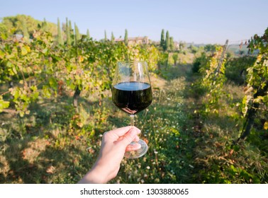 Wine glass in a hand and natural landscape with grapevine of Tuscany. Meadows of Italy at sunny day.