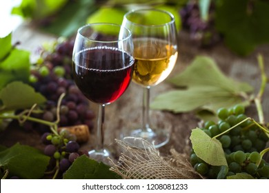 Wine. Glass of white and red wine in wine cellar. Old  wine on wood.