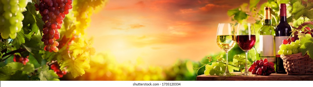 Weingläser, Weinflaschen, Weinberge und Weintrauben in der Natur.