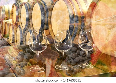 Wine Glasses in a Wine Cellar with French Oak Barrels Casks of Wine and wine grape clusters overlayed in the image.