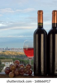 Wine and grapes with Barcelona and the Mediterranean sea on the background