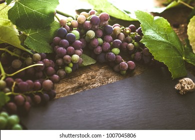 Wine. grapes on wood. Wine concept