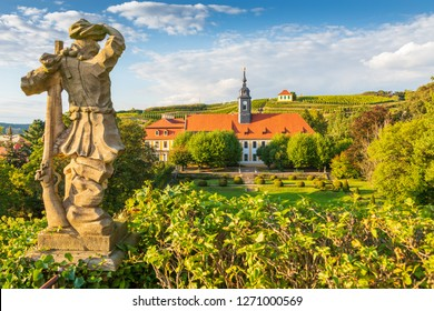 Wine growing in Meissen at the Saxon Wine Route, Germany
