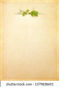 Wine list menu with green leafs of grapevine on old paper. Vintage background for your wine card with copy space for text. Template of blank menu for alcoholic drinks with branch of grape.