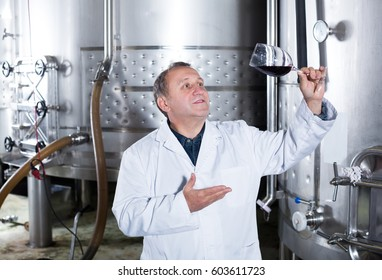 Wine maker controls quality of wine at winery