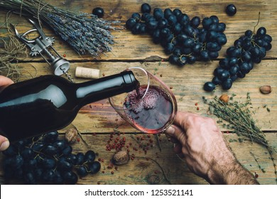 Wine maker pouring red wine (bio) for tasting. Red wine tasting in a wine glass with grapes, nuts and herbs on the background of the old wooden table. Table setting.