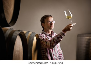 Wine producer inspecting quality of white wine during wine tasting in cellar in front of barrels.