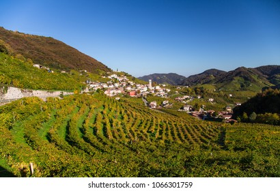 Wine region Valdobbiadene, Italy