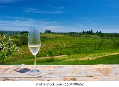 Wine tasting in California. Glass of white wine and vineyards.