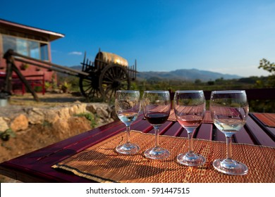 Wine tasting glasses at outdoor vineyard