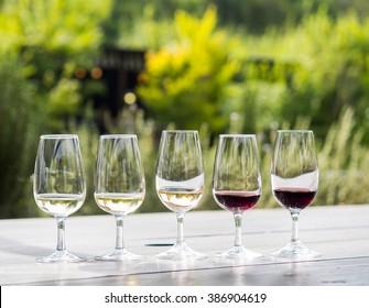Wine tasting in Stellenbosch, South Africa. From the left: sauvignon blanc, chardonnay, blanc de noir, merlot, cabernet sauvignon.