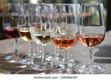 Wine Tasting in Waiheke, New Zealand