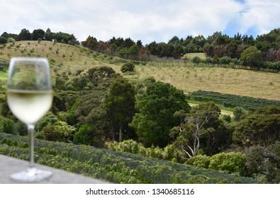 Wine Tasting at Waiheke Vineyard, New Zealand