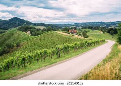 Wine Trail in Southern Styria with some Clouds