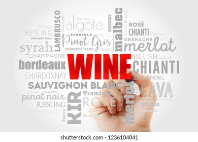 WINE VARIETALS Types word cloud collage with marker, concept background