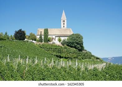 Wine Village of Kurtatsch near Merano,South Tyrol,Trentino,Italy