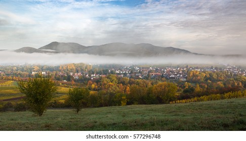 Wine village in the morning, Pfalz, Germany