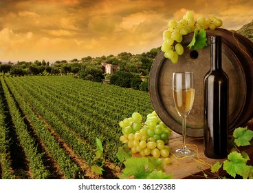 Wine and vineyard in sunset