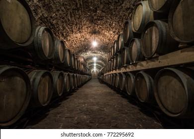 Wine wooden barrels lying in rows. Basement room of shellfish, weak lighting