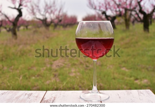 Wineglass with red wine on the table at the peach tree garden