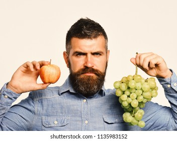 Winegrower with serious face holds grapes and red fruit. Man with beard holds bunch of green grapes and apple isolated on white background. Farmer shows his harvest. Viticulture and gardening concept