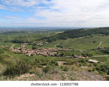 Mâcon wine-growing region
