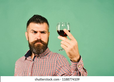 Winemaker with concentrated face holds wineglass. Viticulture and autumn concept. Sommelier tastes expensive beverage. Man with beard examines glass of red wine isolated on green background