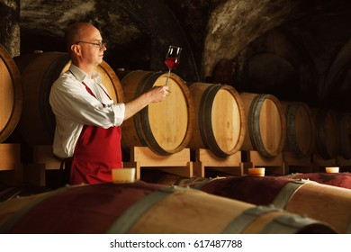 Winemaker tasting his harvest in vine cellar