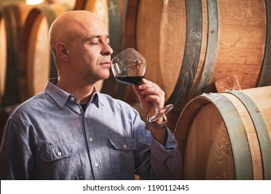 Winemaker tasting  red wine in front of wine barrels.