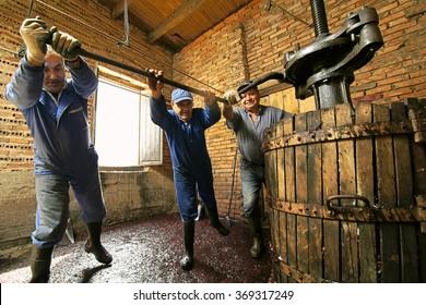 winemakers farmers making wine of grape  in traditional winepress  in  Villarejo de Orbigo, Leon , Spain ; slow shutter  speed with flash