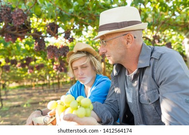 Winemakers father and son in vineyard. Family winery business. Wine grower man in straw hat examining grapes during vintage. Two generations of vintners together. Harvest time in winery industry