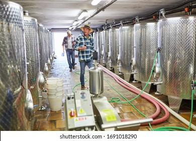 Winemakers in front of the fermentation tanks in the winery filling the wine with a hose