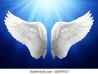 Wing in Blue Background