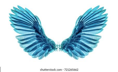 wing on black blackground