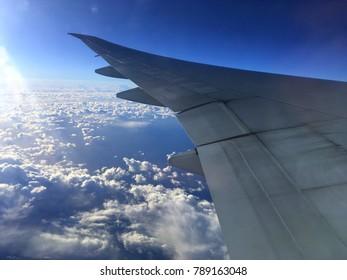 Wing plane during flight