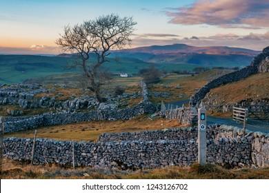 Winskill Stones Nature Reserve,  Winskill Stones. Location: near Settle, Yorkshire Dales National Park, North Yorkshire.