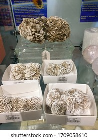Winslow, Arizona/ United States of America- November 3, 2018- There are many different kinds of minerals for sale in the gift shop such as this Desert Rose