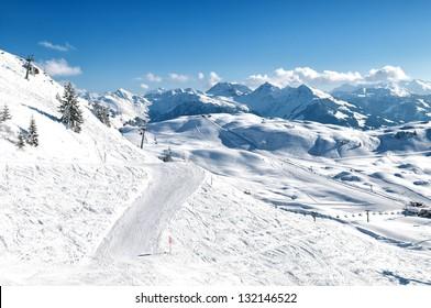 winter  - Shutterstock ID 132146522