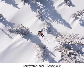 Winterantenporträt von Snowboarder-Weibchen, die in sauberem Schnee zwischen Weihnachtsbäumen liegen. Schneeberg im Skigebiet, sonniger Winterurlaub