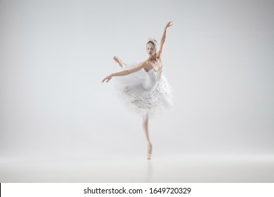 Winter alive. Young graceful classic ballerina dancing on white studio background. Woman in tender clothes like a white swan. The grace, artist, movement, action and motion concept. Looks weightless.