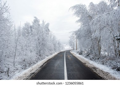 Winter asphalt road in the snow covered forest