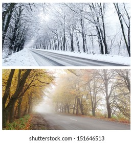 Winter and Autumn panorama of the forest road. One and the same place.