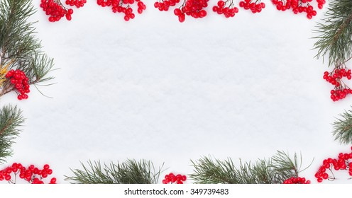 winter  background berries and  fir branch frame on snow rustic style