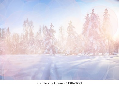 Winter background with blur filter and bokeh