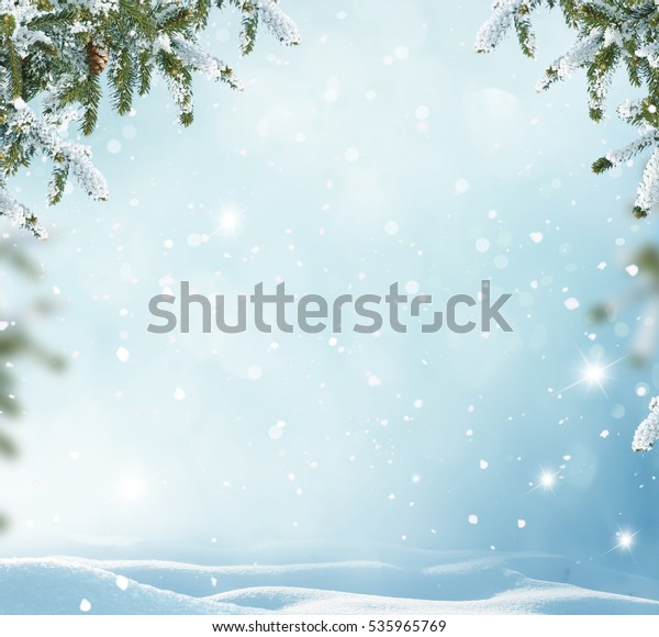 Winter Background Fir Tree Branch Merry Stock Photo (Edit Now) 535965769